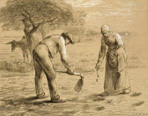 Peasants planting potatoes